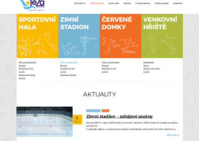 TEZA - grafika webu